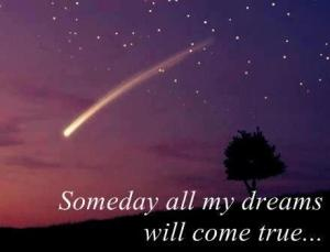 Some Day My Dreams Will Come True truedailyquotes.blogspot.com