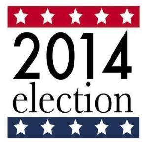 4031991300_election2014logo_xlarge